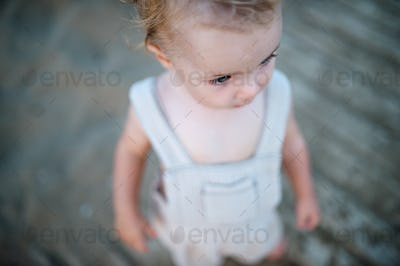 A top view of small toddler girl on beach on summer holiday.