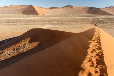 Sand Dune No. 45 at Sossusvlei, Namibia
