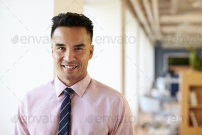 Portrait Of Smiling Mature Businessman In Modern Office Standing By Window