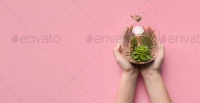 Woman holding succulent garden in glass terrarium