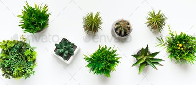 Various artificial plants in pots on white table
