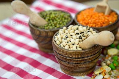 Healthy Vegetarian Raw Food Legumes