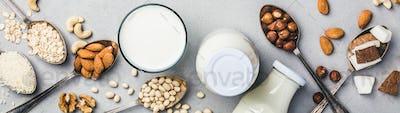 Vegan milk and ingredients on rustic background, flat lay