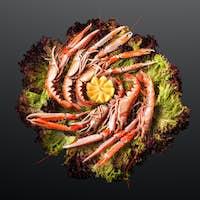 Norway lobster grilled.