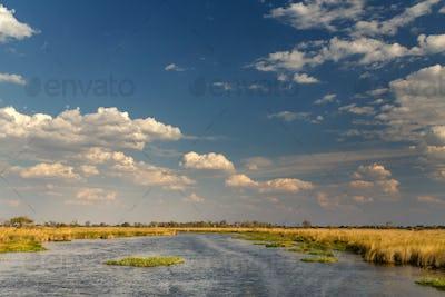 Okavango Delta, Africa