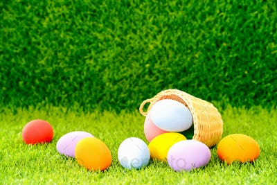 Easter eggs in the basket on green grass-6
