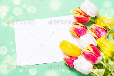 Holiday background or greeting card. Flower