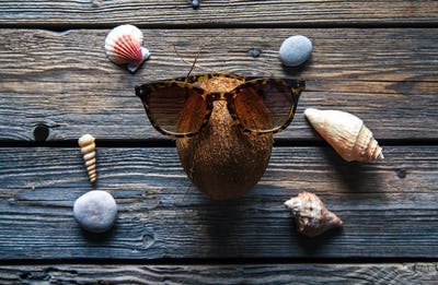 Coconut on a wooden background, seashells, stones, food, nature
