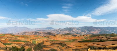 yunnan red land panorama