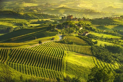 Langhe vineyards sunset panorama, Grinzane Covour, Piedmont, Ita