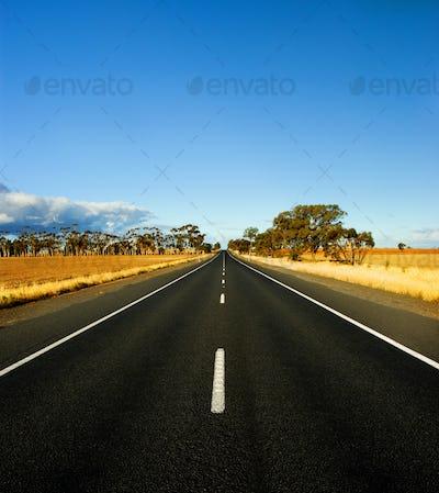 Gorgeous Rural Road