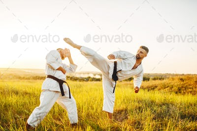 Two karate fighters, kick in the stomach