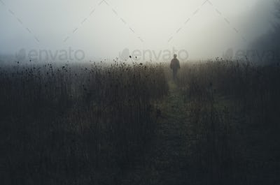 man walking in nature on rainy morning landscape with fog