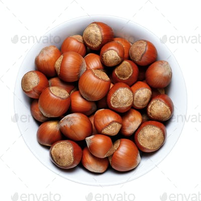 Hazelnuts with shell in bowl isolated on white background