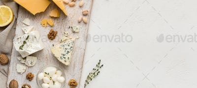 Cheese appetizer concept