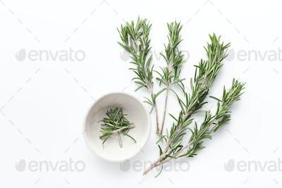 Fresh green sprigs of rosemary on white