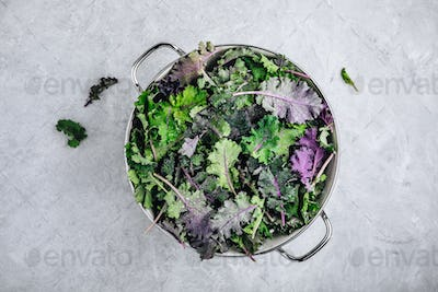 Green baby kale leaves in white colander on gray stone background.