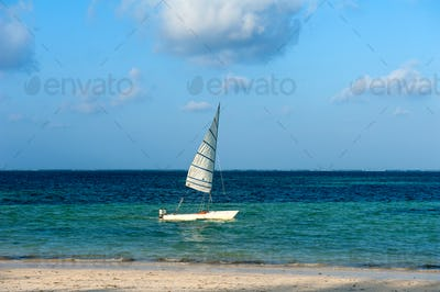 Fishing boats in the ocean