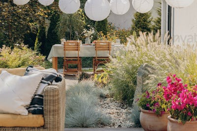 Plants next to rattan sofa with pillows on the terrace with wooden chairs at table