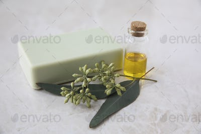Eucalyptus Oil, Soap, and Leaves