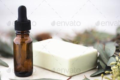 Eucalyptus Oil and Soap