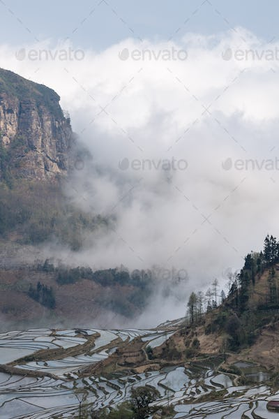 yunnan terraced field landscape, clouds fog wreathed the valley