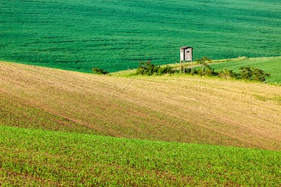 Moravian rolling landscape with hunting tower shack