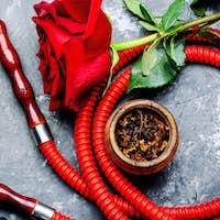 Smoking hookah with rose flavor