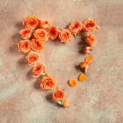 Flat lay composition of heart shape is made from a lot of coral roses