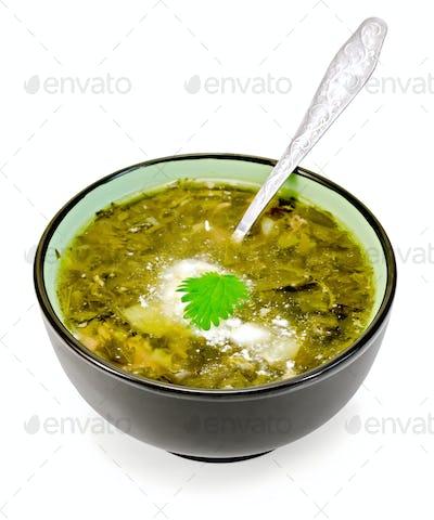 Soup green nettle