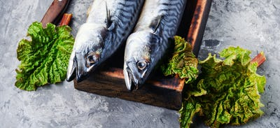 Smoked fish with herb