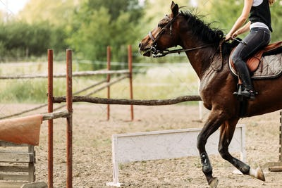 Picture of young pretty girl riding horse