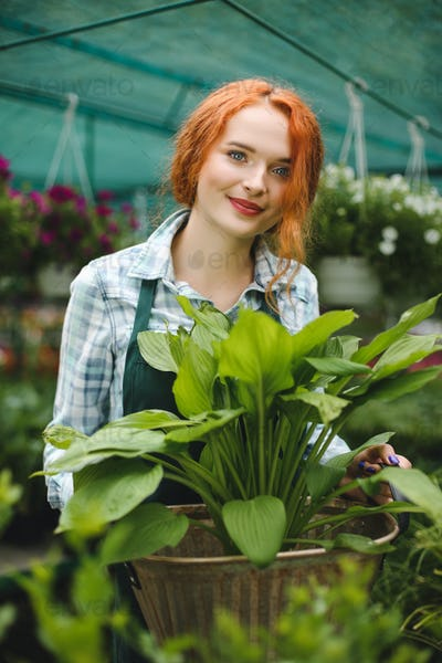 Cute smiling florist in apron standing with big flower in hands and joyfully looking in camera