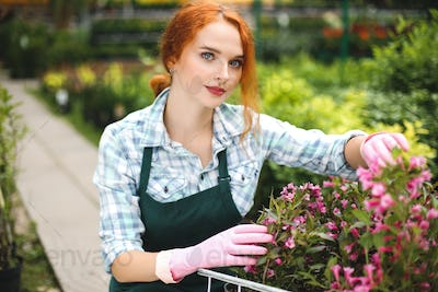 Pretty florist in apron and pink gloves dreamily looking in camera while working with flowers