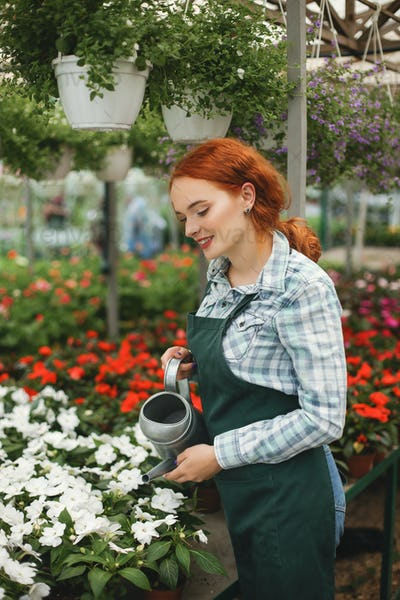 Young smiling florist in apron standing with watering can and wa
