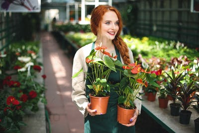 Pretty smiling florist in apron standing with two flowers in pots and dreamily looking aside