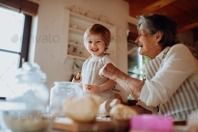 Senior grandmother with small toddler boy making cakes at home.