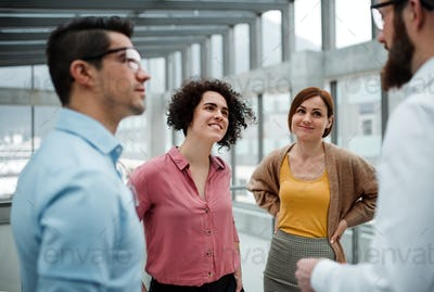 A group of young businesspeople standing in office, talking.