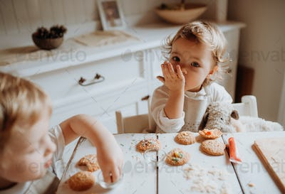 Two small toddler children sitting at the table, decorating and eating cakes at home.