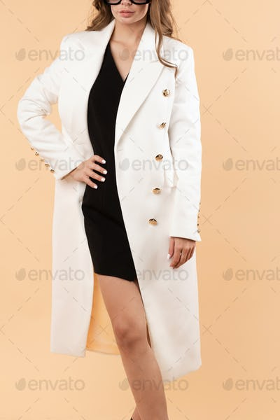 Elegant business woman in luxury clothes and shoes