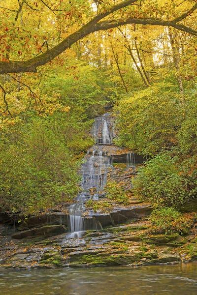 Hidden Cascade in the Fall Forest
