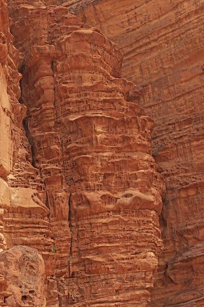 Bizarre Patterns in Eroded Sandstone