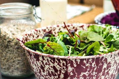 Fresh Swiss chard leaves in salad bowl