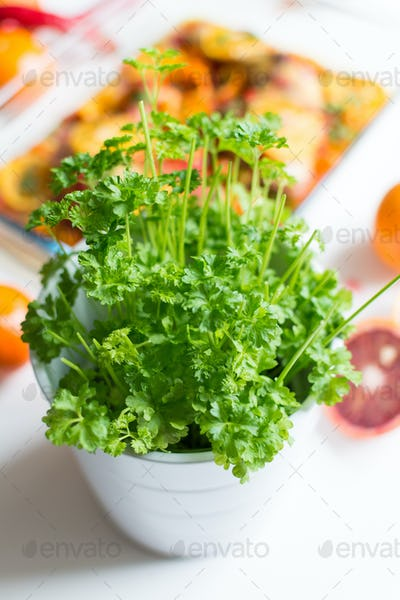 Pot of vibrant green fresh parsley