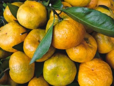 Soft tangerines aerial