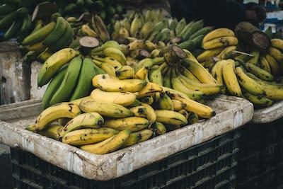 Crate of ripe bananas