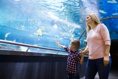 Family watchig fishes at a aquarium