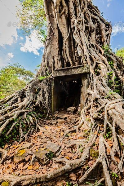 Sambor Prei Kuk temple ruins, Cambodia
