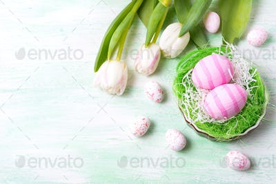Easter pink eggs in the nest and white tulips, copy space.