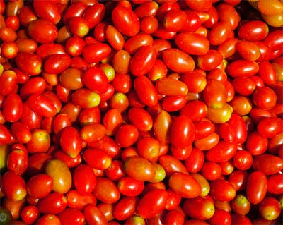 Red small sweet tomatoes background